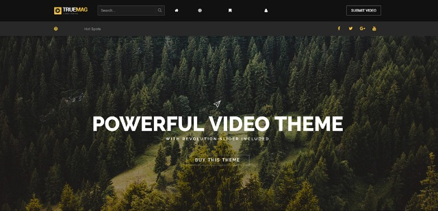 video WordPress theme with flexible templates