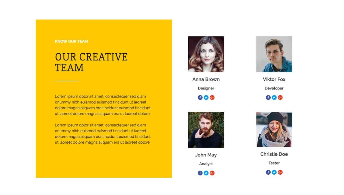 Solitair WordPress Theme with Team Feature