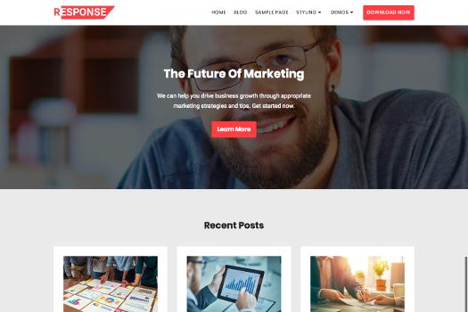 Free Blog WordPress Theme