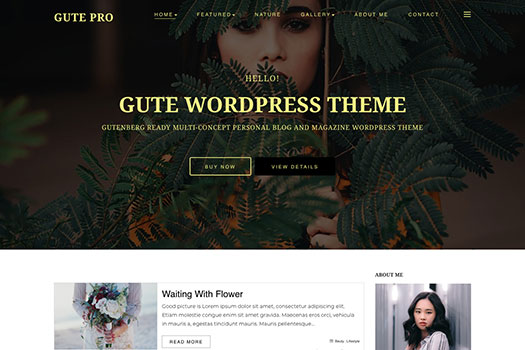 Free Gutenberg WordPress Theme