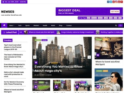 Newses- WordPress free news theme