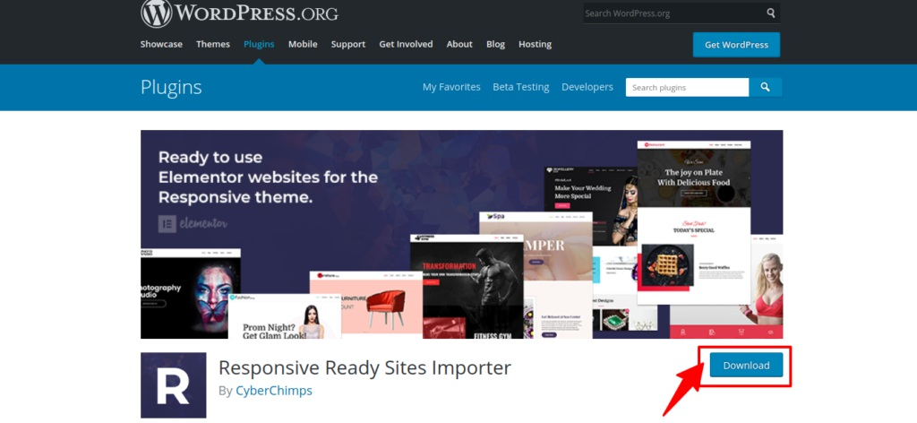 Download Responsive ready site importer